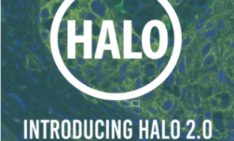 Indica Labs announce release of HALO 2.0
