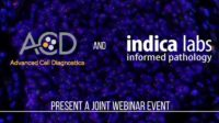 ACD and Indica Labs Present a Joint Webinar Event