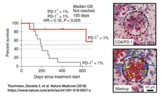 Press Release:  New paradigms for quantitative assessment of PD-1 and PD-L1 using the HALO® image analysis platform described in two recent publications