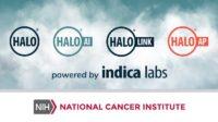 Transition to Cloud: Establishing a Collaborative Digital Pathology Platform at the National Cancer Institute