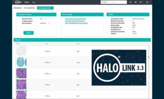 HALO Link 3.3 Sneak Peek