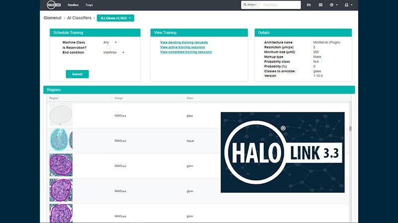 Halo-Link-3.3 Sneak Peek