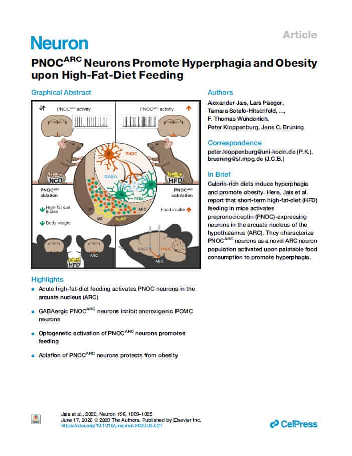 PNOCARC Neurons Promote Hyperphagia and Obesity upon High-Fat-Diet Feeding