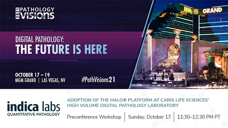 Path-Visions-Precon-Workshop-2021